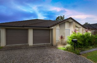 Picture of 19 Brushwood Circuit, Forest Lake QLD 4078