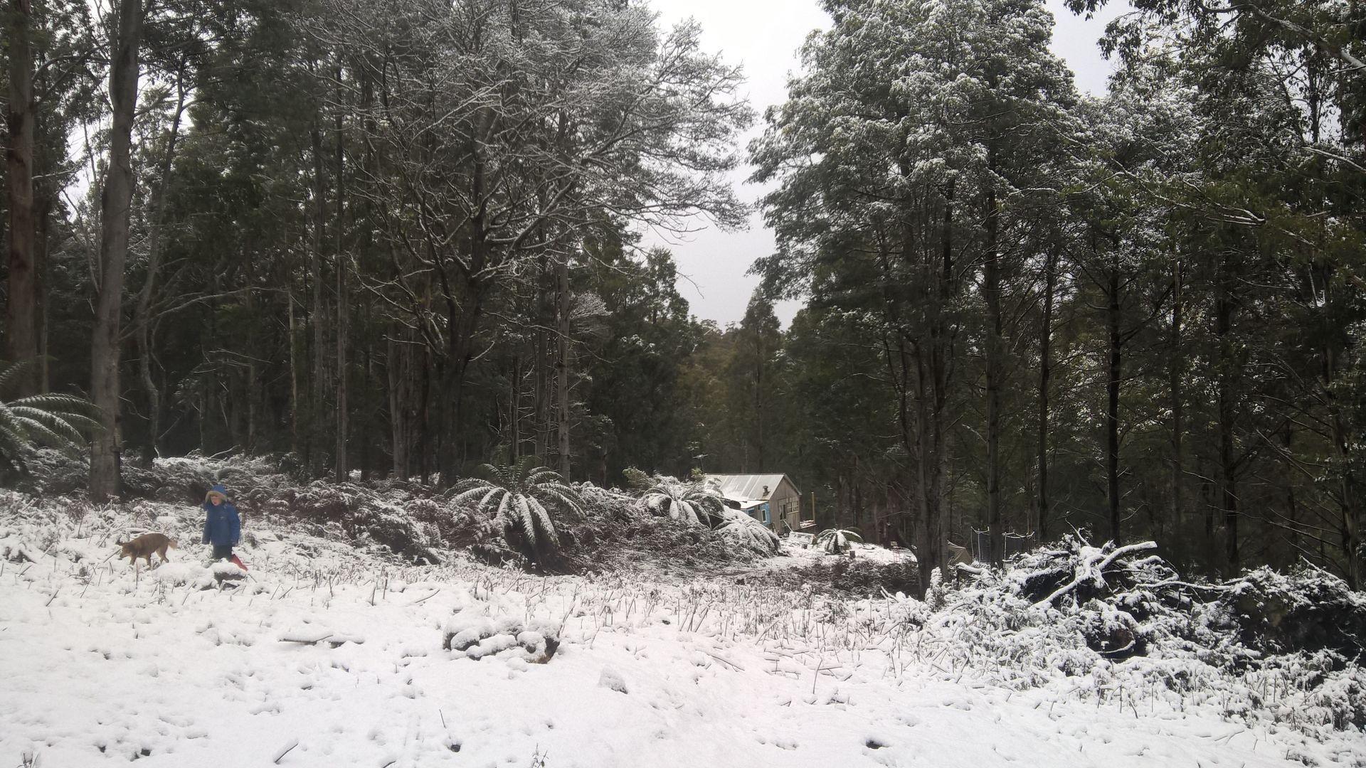 1 Bakers Creek Road, Lucaston TAS 7109, Image 1