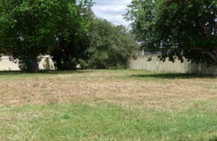 Picture of 14 Bardwell Street, Holbrook NSW 2644