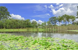 Picture of 163 Abbotsford Mountain Road, Bucca QLD 4670