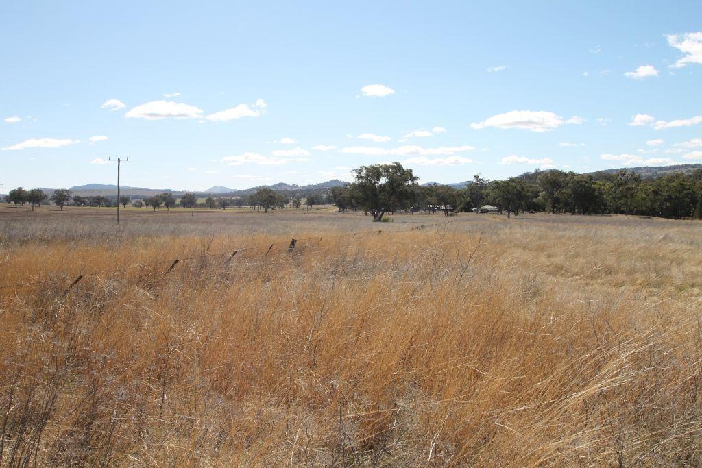 145 Bridges Road, Quirindi NSW 2343, Image 1