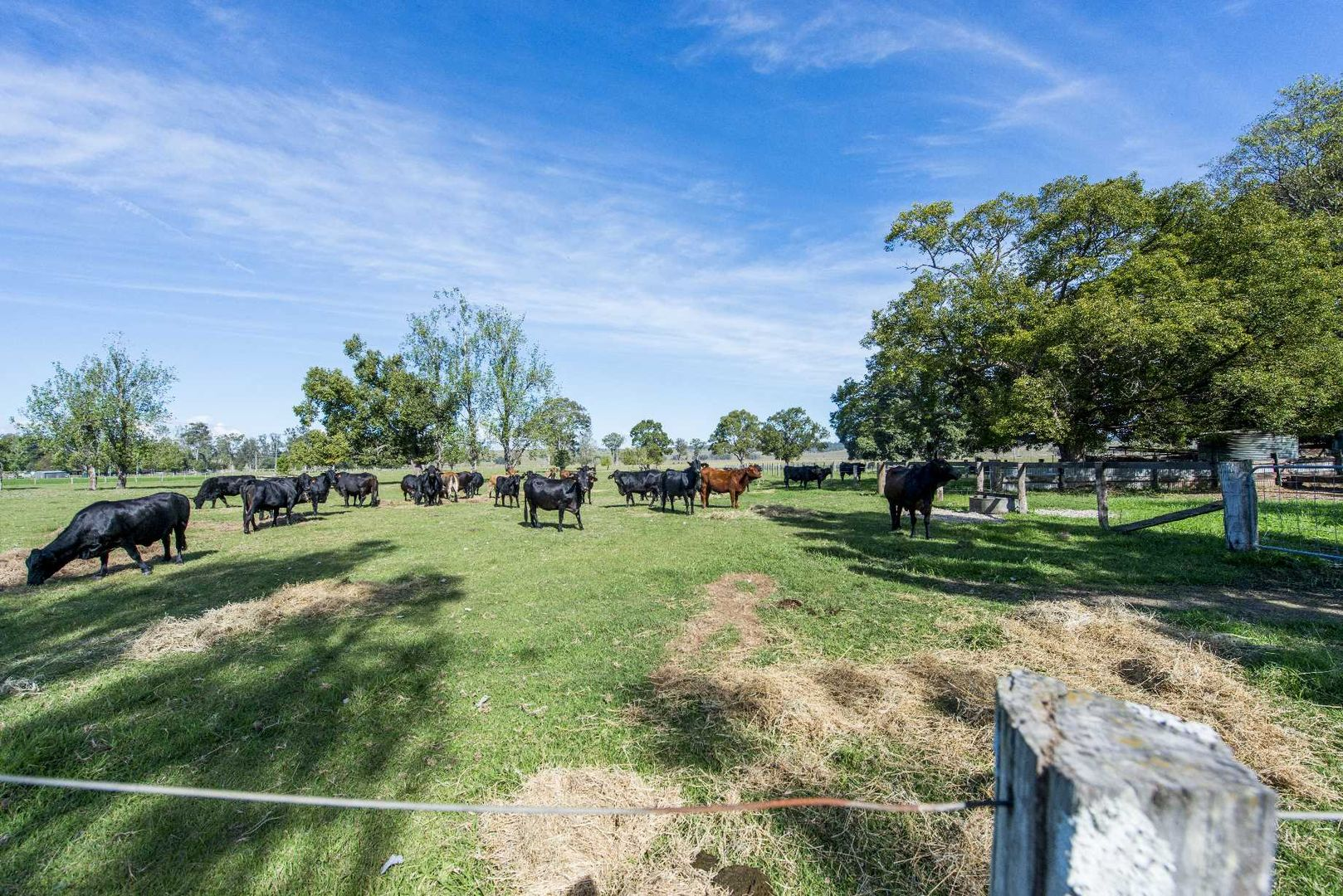 299 Gwydir Highway, Waterview NSW 2460, Image 2