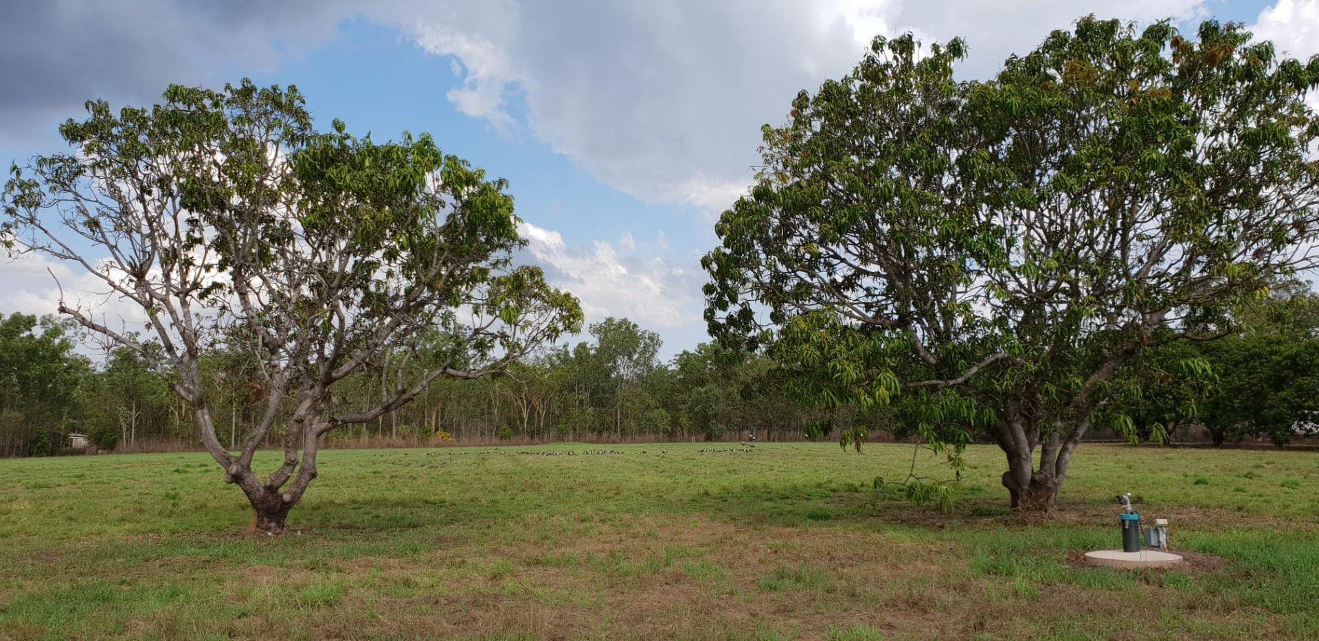 135 Setosa Road, Humpty Doo NT 0836, Image 0