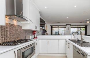 3 SHACKLETON PLACE, Flinders Park SA 5025