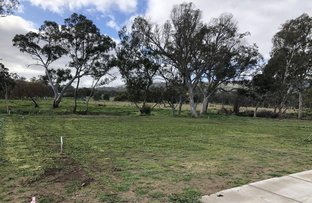 Picture of 22 Molly Drive, Harcourt VIC 3453