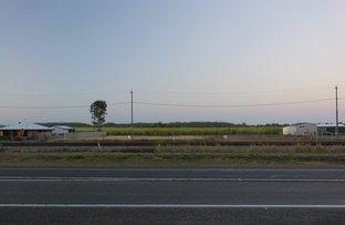 28 Mackenzie Road, Calen QLD 4798