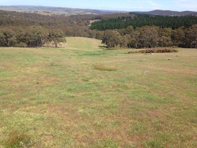 2475 Gurrundah Rd, Gurrundah NSW 2581, Image 2