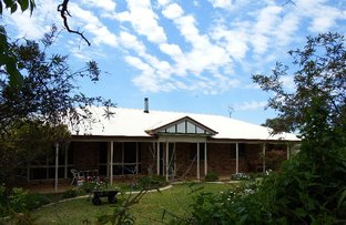 Picture of 231 Washpool Road, Rosenthal Heights QLD 4370