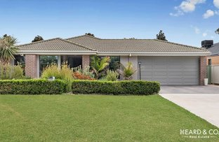 Picture of 17 Mcconnachie Court, Ascot VIC 3551