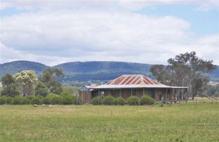 Picture of 45 Bayly Lane, Mudgee NSW 2850