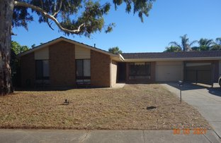 Picture of 41 Byron Ave, Clovelly Park SA 5042