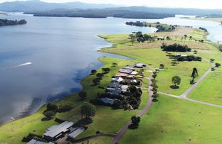 Picture of Lots 281- 287 Edgewater Access, Yungaburra QLD 4884