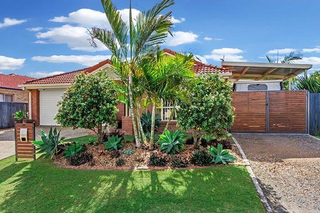 Picture of 72 Glentree Avenue, UPPER COOMERA QLD 4209