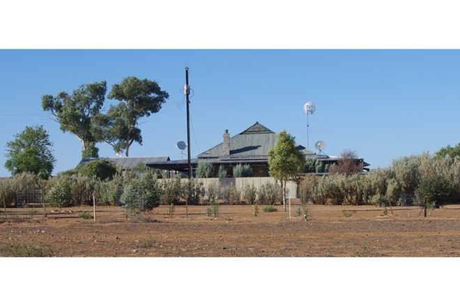 Picture of 1259 Marron Road, CRADOCK SA 5432