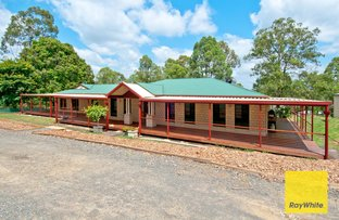 Picture of 427-433 Millstream Rd, Cedar Vale QLD 4285