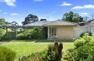 Picture of 6 Crane Avenue, Coromandel Valley SA 5051