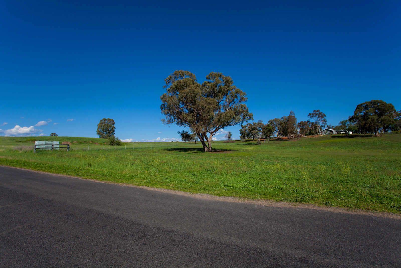 6 Pindari Grove, Wellington NSW 2820, Image 1
