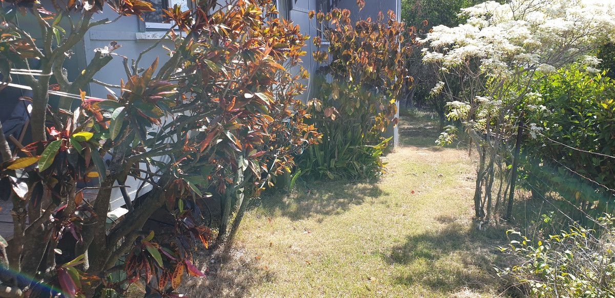 31 Darcy Street, Mount Morgan QLD 4714, Image 2