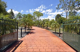 74 Vines Avenue, The Vines WA 6069