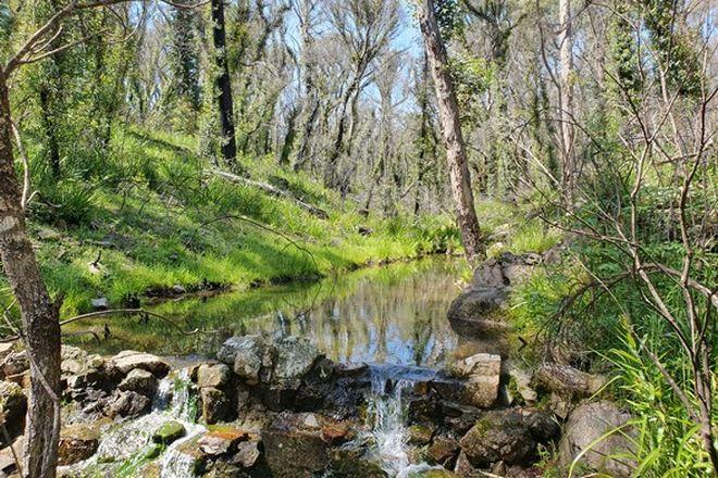 Picture of 4161 Kings Highway, Monga, BRAIDWOOD NSW 2622