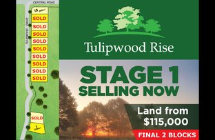 Picture of Lot 1 Tulipwood Drive, Tinana QLD 4650