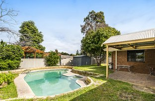 Picture of 10 Calluna Way, Forrestfield WA 6058