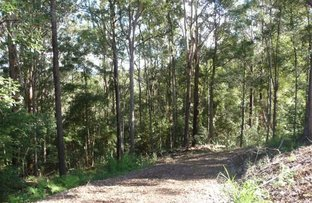 Picture of Towen Mountain QLD 4560