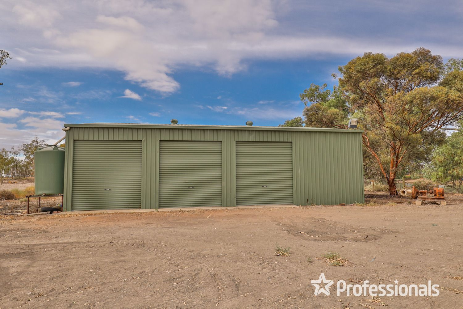 252D Darling View Road, Wentworth NSW 2648, Image 2