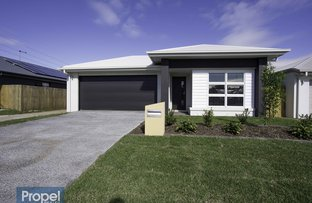 Picture of 14 Sandpiper St, Nudgee QLD 4014