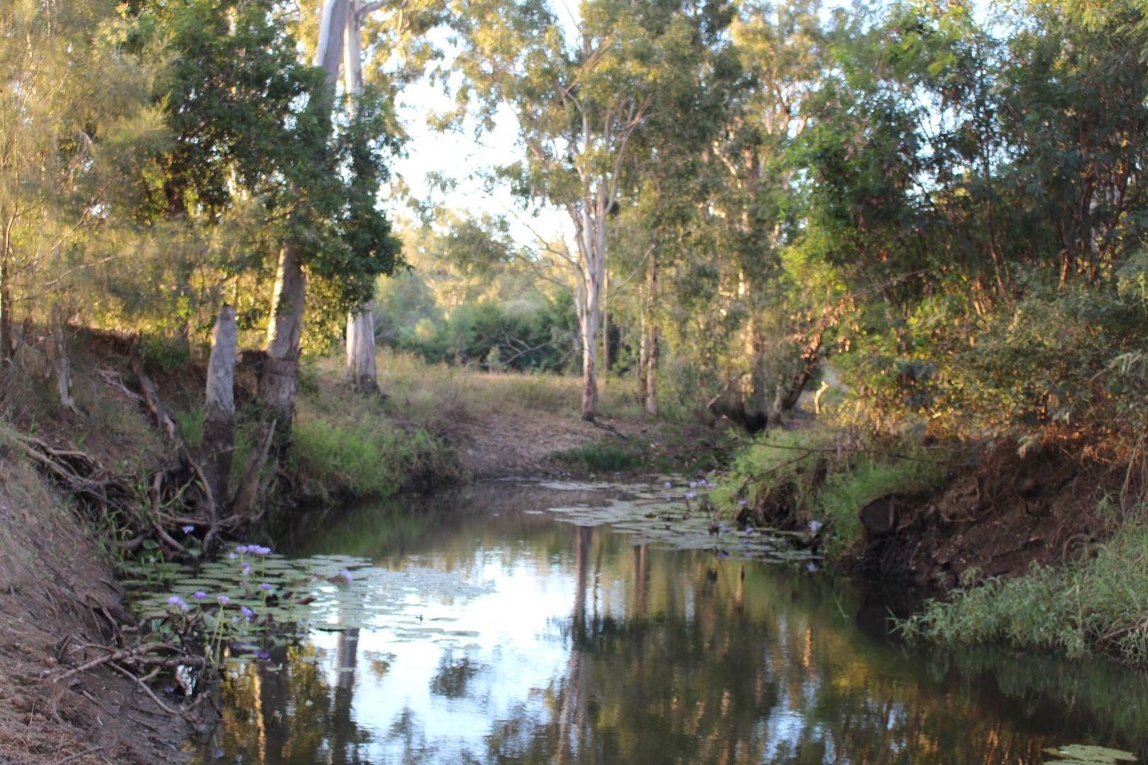 61 Morse Road, Raglan QLD 4697, Image 1
