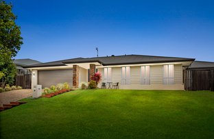 Picture of 19 Daintree Drive, Coomera QLD 4209