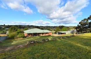 Picture of 9 PRITCHARD LANE, Beechworth VIC 3747