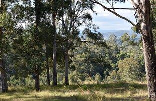 Picture of Lot 100 Yabbra Road, Old Bonalbo NSW 2469