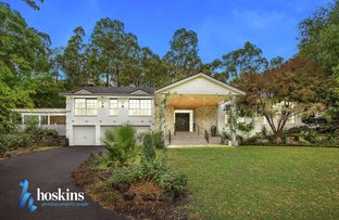 Picture of 4 Tralee Court, Park Orchards VIC 3114