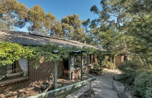 Picture of 1 Oakley Road, Aberfoyle Park SA 5159