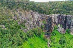Picture of Springbrook QLD 4213