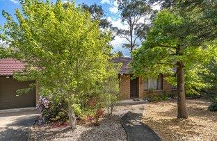 Picture of 19 Anne Crescent, Blaxland NSW 2774