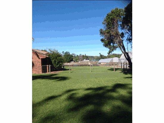 50 Mawsons Road, Beerwah QLD 4519, Image 1
