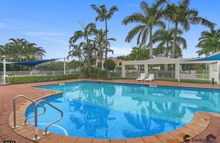 Picture of 4/60 CASEY'S ROAD, Hope Island QLD 4212
