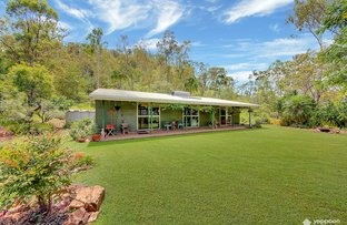 Picture of 343 Hoffmans Road, Tungamull QLD 4702