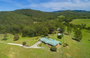 Picture of 600 Pipeclay Rd, Pipeclay NSW 2446