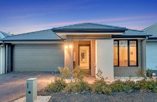 Picture of 3 Nattai Street, Craigieburn VIC 3064