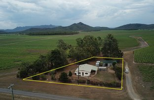 Picture of 74 Scotts Road, Lannercost QLD 4850