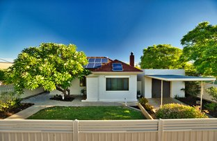 Picture of 48 Conmurra Avenue, Edwardstown SA 5039
