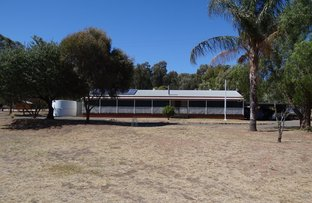 Picture of Lot 1 Cooka Hills Road, Cookamidgera NSW 2870