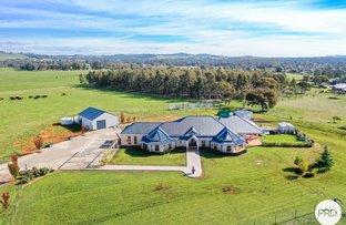 Picture of 1037 Urana Road, Jindera NSW 2642