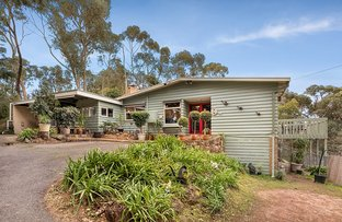 Picture of 87 Research - Warrandyte Road, North Warrandyte VIC 3113