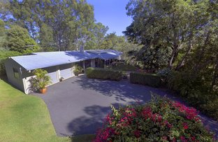 Picture of 166 Haven Rd, Pullenvale QLD 4069