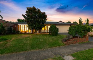 Picture of 17 Stable Grove, Skye VIC 3977