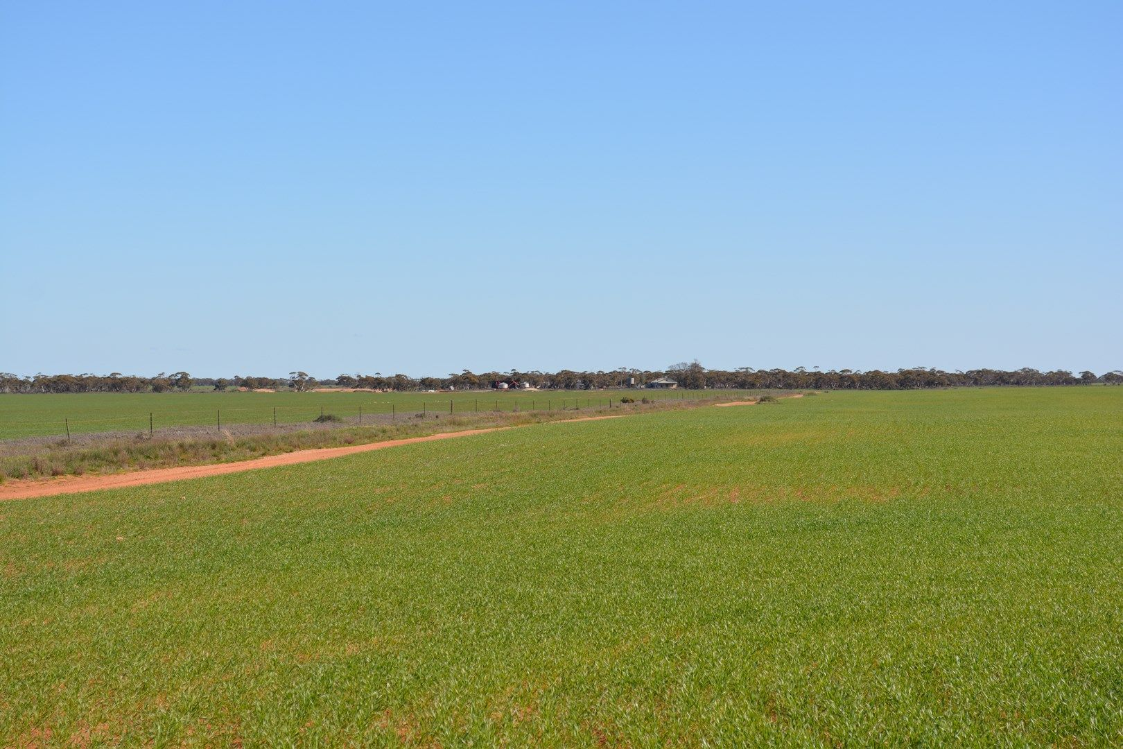 CA 56 Meridian Road, Benetook via, Red Cliffs VIC 3496, Image 0